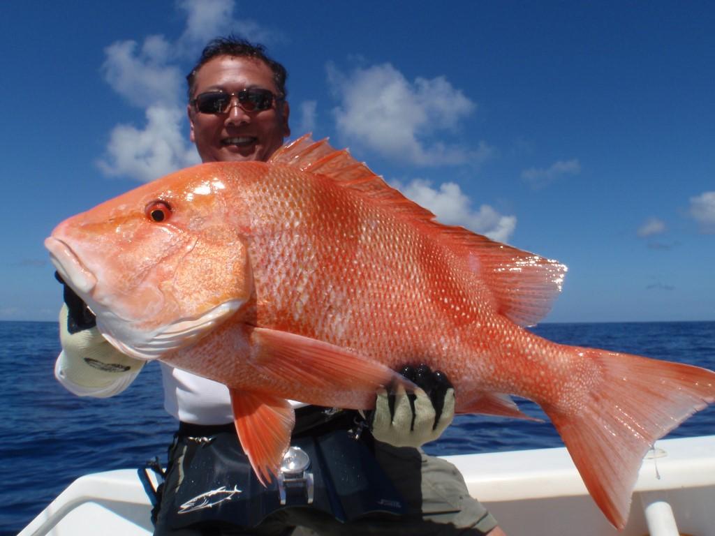 Techniques de p che nirvana fishing p che sp cialis for Acheter poisson rouge en gros